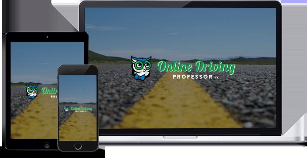 Driving-Professor-responsive